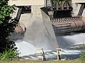 Dam on McKenzie River near Vida, Oregon (6111748480).jpg