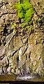 Dastoori Naka,Matheran - panoramio (67).jpg