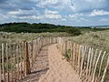 Dawlish Warren , National Nature Reserve and Sandy Path - geograph.org.uk - 1345760.jpg