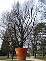 Der übergroße Blumentopf des Totalkünstlers Timm Ulrichs, Französischer Garten in Celle, hier mit Parolen, Schmierereien und Reviermarkierungen von Berufsjugendlichen.jpg
