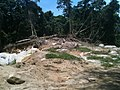 Destruição^ 2013, aonde o rio transbordou... - panoramio (9).jpg