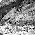 Dinosaur tracks in slabs of Kayenta formation on left hand fork of North Creek, section 23, T 40 S, R 11 W. ; ZION Museum and (409d0cead29a440ca8a2ab80adb0a4f7).jpg