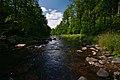 Divoká Orlice u jižního okraje přírodní rezervace Zemská brána, okres Ústí nad Orlicí.jpg