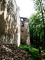 Dobrá Voda (TT), hrad (13).jpg
