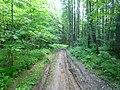 Dobryanskiy r-n, Permskiy kray, Russia - panoramio (192).jpg