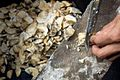 Dried cassava is cut into small pieces before being turned into snacks to be sold at market (10693654476).jpg