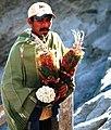 Dried flowers at Mount Bromo.jpg