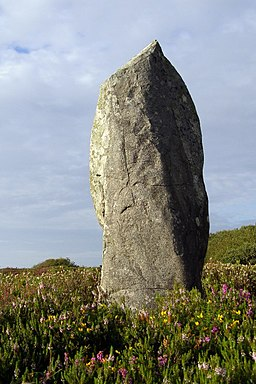 Dry Tree menhir, Goonhilly Downs - geograph.org.uk - 526157