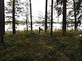 Dusetų sen., Lithuania - panoramio (131).jpg