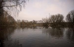Flixton, Greater Manchester - Dutton's Pond