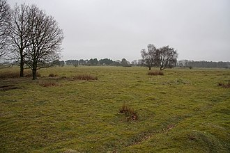 East Wretham Heath - Image: East Wretham Heath geograph.org.uk 729252