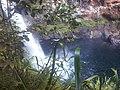 En haut de la cascade de takamaka - panoramio.jpg