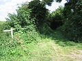 Entry to Hurdle Lane - geograph.org.uk - 515788.jpg