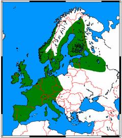 Erinaceus europaeus range map.png