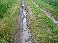 Erosion Off-site Wege008.JPG