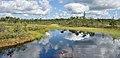 Estonia Endla Nature Reserve 03.jpg