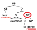 External possession structure - French.png
