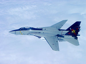 F-14B VF-11 Top Port - 2005.jpg