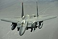 F-15E on patrol over Afghanistan - 081107-F-7823A-141.jpg