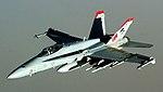 F18 Hornet Red Devils.jpg