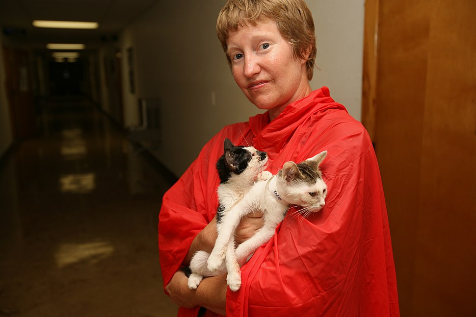 FEMA - 34984 - Humane Society worker holding rescued cats