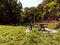 FLT M31 7.5 mi - Picnic tables at old mansion foundation - panoramio.jpg