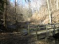 Fall Run Park in Shaler Township, late winter - 27.jpeg