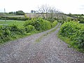 Farm road, off Bar Hall Road - geograph.org.uk - 456240.jpg