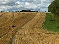 Farmland beside Ox Wood - geograph.org.uk - 230208.jpg