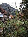 Farmland in Shin-Yabakei Valley 20141117-2.jpg
