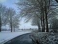 February Winter Light Glottertal - Mythos Black Forest Photography 2013 - panoramio (16).jpg