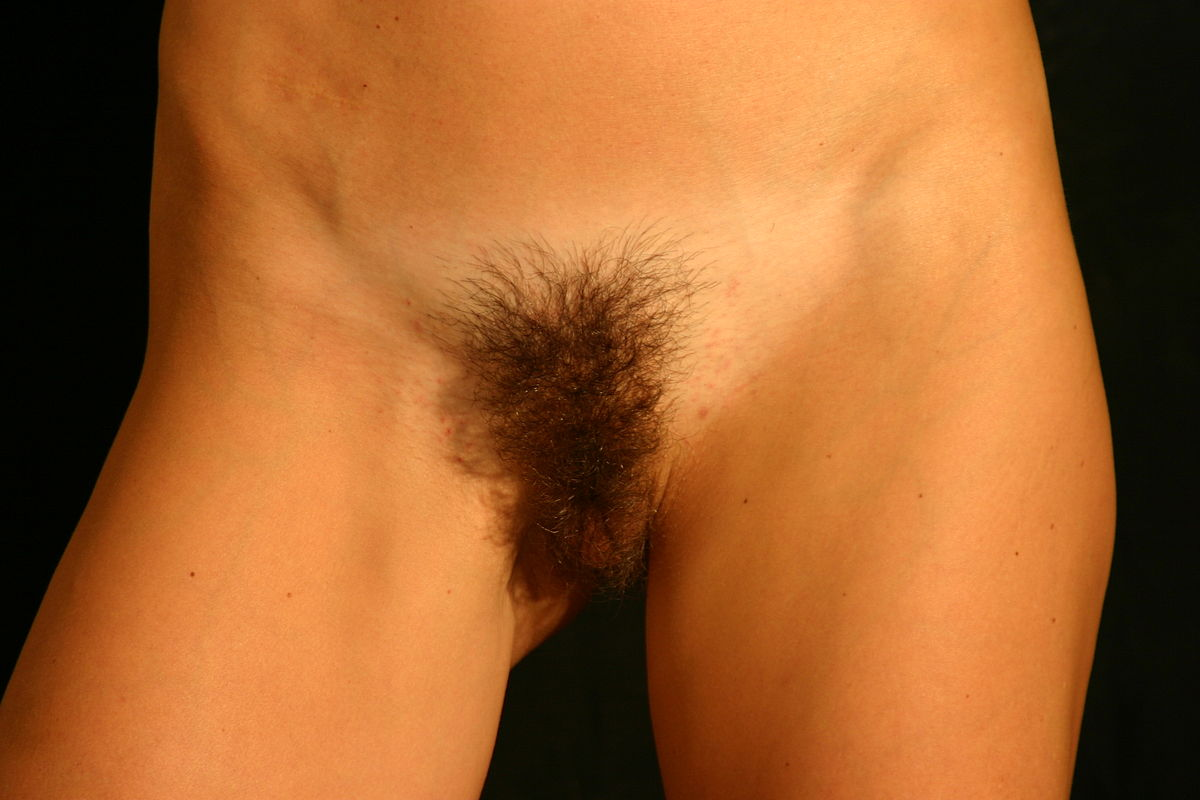 Pubic Hair Fetishism - Wikipedia-4747