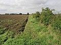 Field and Cumberworth - geograph.org.uk - 230701.jpg