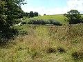 Field beside Woodland Barton - geograph.org.uk - 231762.jpg