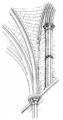 Fig 83 -Vaulting conoid, Salisbury Cathedral.png