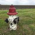 Fire Hydrant Painted Like a Dalmation.jpg