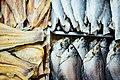 Fish Market (Unsplash).jpg