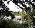 Fishing on Beaver lake. VIEW IN PANORAMIO FOR DESCRIPTION - panoramio.jpg