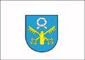 Flaga Pniewy.png