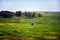 Flickr - Israel Defense Forces - The Golan Heights.jpg