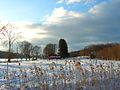 Flickr - Per Ola Wiberg ~ mostly away - Meadow in snow.jpg
