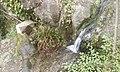 Font de la Roca, Terrassa (maig 2013) - panoramio.jpg