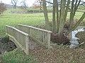 Footbridge in Eastnor Park - geograph.org.uk - 628031.jpg