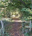 Footpath off Watery Lane - geograph.org.uk - 606840.jpg