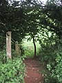 Footpath to Liverton Business Park from Cycleway 2 - geograph.org.uk - 953639.jpg
