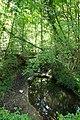 Forêt de Stambruges 21.jpg