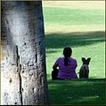 Ford Park, Dog and Friend, Redlands, CA 7-12 (7795291326).jpg