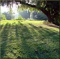 Ford Park, First Light, Redlands, CA 8-12 (7796888660).jpg