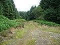 Forest Road to Barvalgans - geograph.org.uk - 512726.jpg