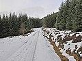 Forestry track in Glen Boltachan - geograph.org.uk - 662626.jpg